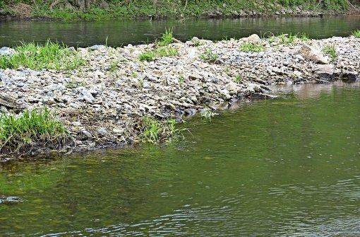 Vor neun Monaten ist kontaminiertes Löschwasser in die Jagst geflossen. Annähernd 20 Tonnen tote Fische waren die Folge.