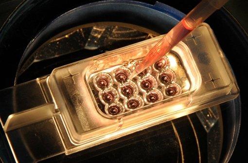 DNA von Embryonen darf verändert werden