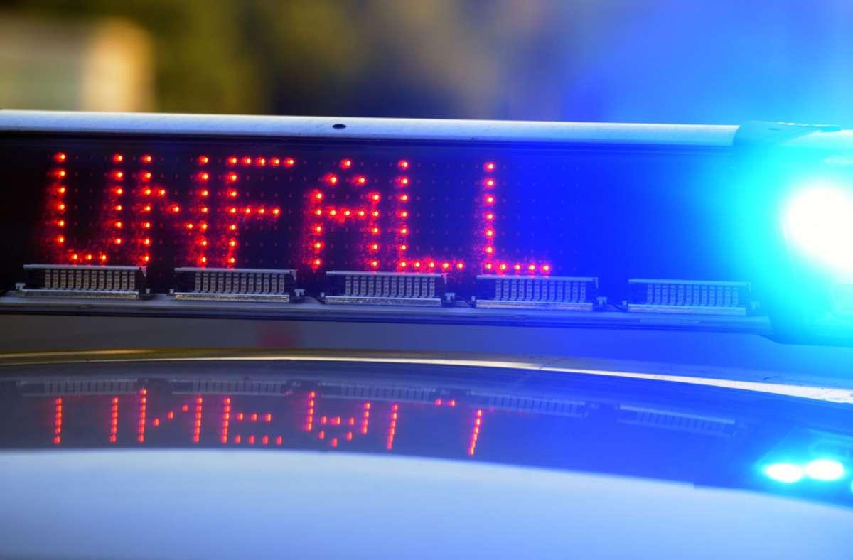 Unfall mit Kutsche in Affalterbach - Pferd dreht durch – zwei Schwerverletzte - Stuttgarter Nachrichten