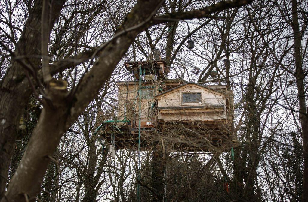 illegales baumhaus in alth tte futterplatz f r v gel droht der abriss rems murr kreis. Black Bedroom Furniture Sets. Home Design Ideas