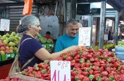Mandarinen, Erdbeeren,  Foto: Welzhofer