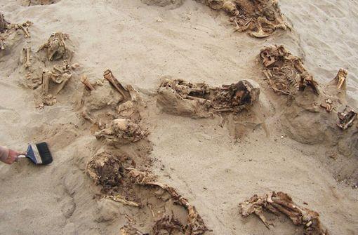 """Ein von """"National Geographic"""" zur Verfügung gestelltes Foto zeigt mehrere über 500 Jahre alte Skelette an ihrem Fundort Huanchaquito-Las Llamas. Foto: dpa/National Geographic"""