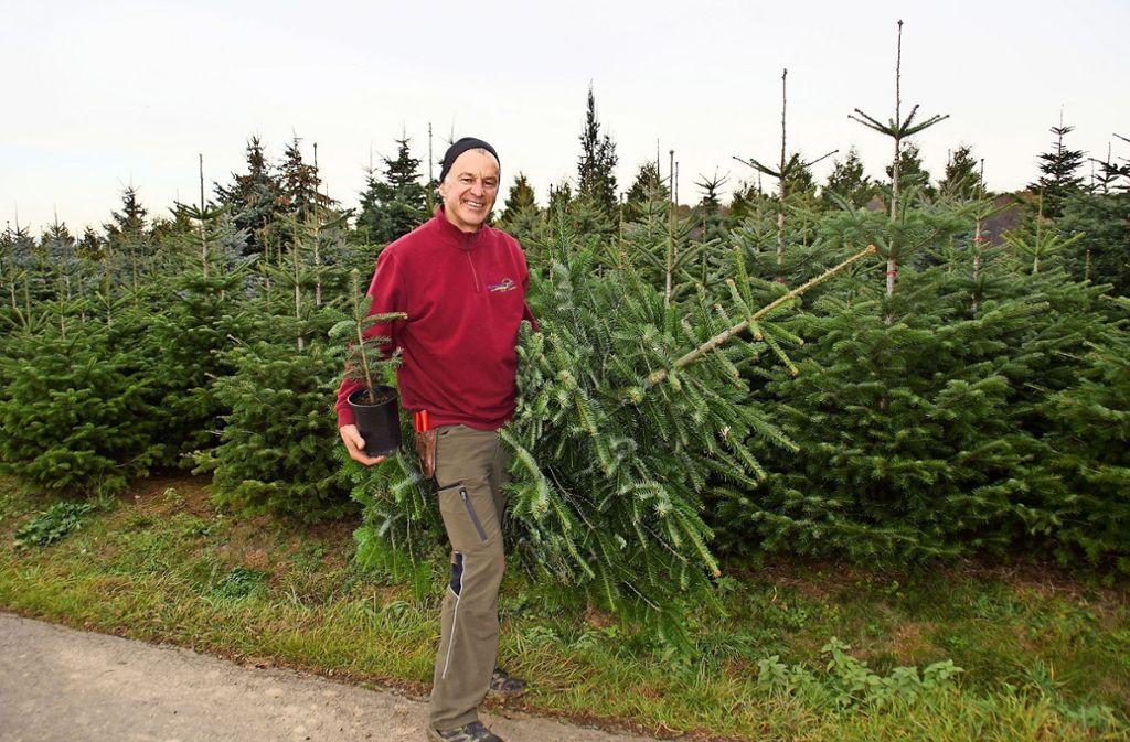 Weihnachtsbaum Selber Schlagen Sauerland.Weihnachtsbäume Auf Den Fildern Auf Heimischem Boden Gewachsen