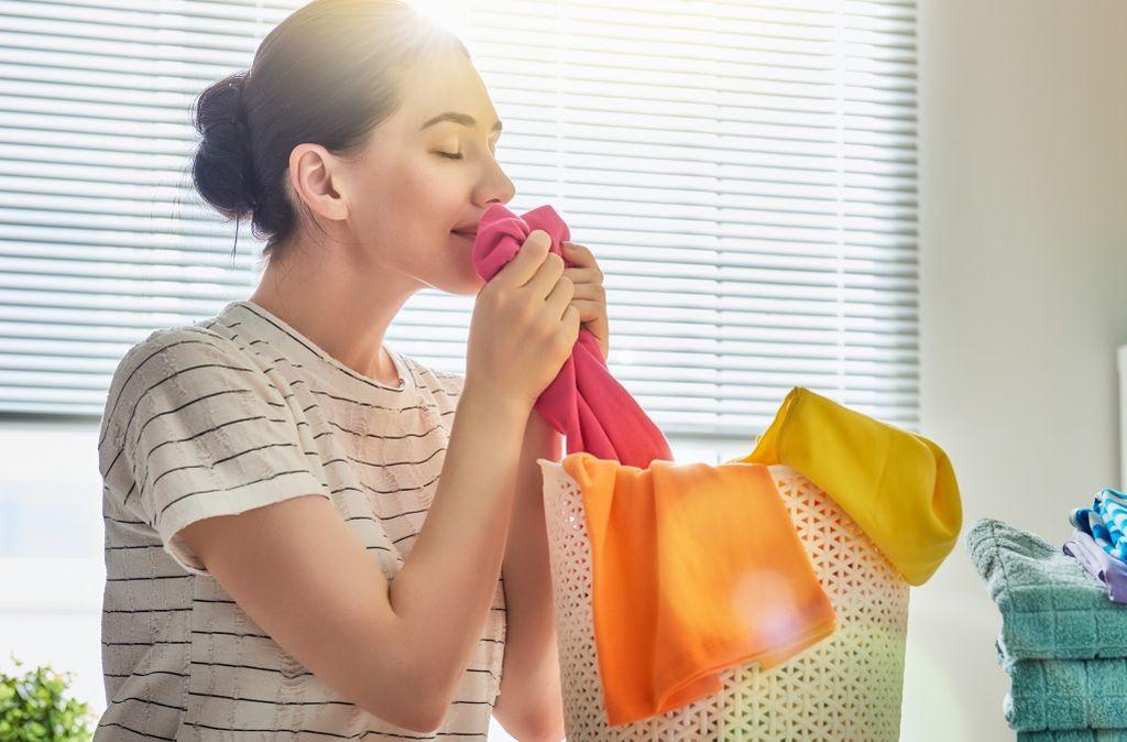 Gerüche neutralisieren: So duften Küche, Kleidung & Co ...