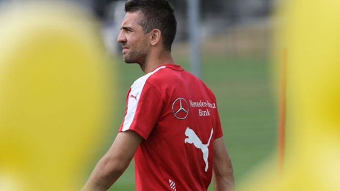 Vedad Ibisevic in der Sackgasse