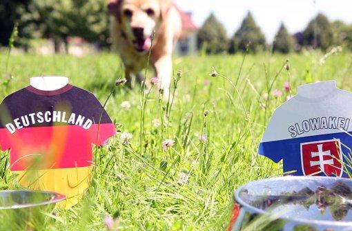 Unser Leberwurst-Orakel tippt das Deutschland-Spiel