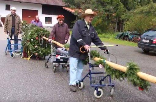 Rollator-Gang klaut Maibaum zurück